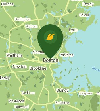 800 Boylston Street Suite 1600B Boston MA 02199